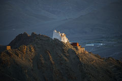 Sunset at Namgyal Tsemo Monastery ,main buddhist monastery centre in Leh, Ladakh, India Royalty Free Stock Image