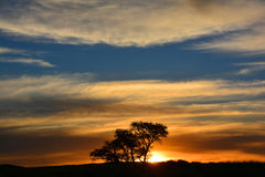 Sunset in Namibia in Namib-Naukluft National Park Royalty Free Stock Photo