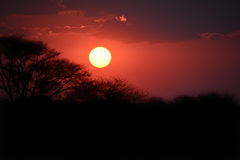 Sunset in Namibia Stock Photography