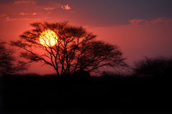 Sunset in Namibia Royalty Free Stock Photos
