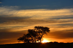 Sunset in Namibia Royalty Free Stock Image