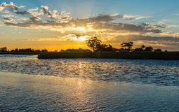Sunset in a natural reserve stock images