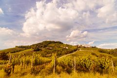 Sunset in the vineyards of Rosazzo Stock Photography