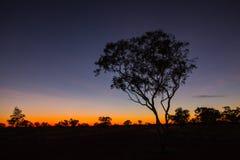 Sunset. Near Halls Creek, on the Kimberleys outback, Western Australia Royalty Free Stock Photo