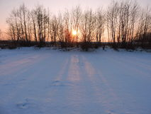 Sunset near river in winter Royalty Free Stock Photo