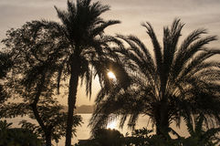Sunset on the Nile River Stock Photo