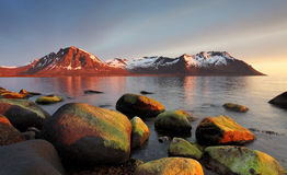 Sunset in Norwegian coast,Senja royalty free stock photo