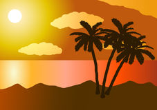 Sunset in the ocean, beach, palm tree Stock Images