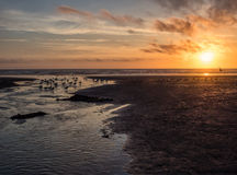 Sunset at an ocean beach Royalty Free Stock Images