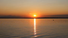 Sunset on a ocean shore. Beauty Sunset on a ocean shore stock footage