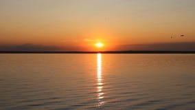 Sunset on a ocean shore. Great touchdown stock video