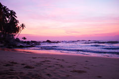 Sunset on the ocean, Sri Lanka beach Royalty Free Stock Image
