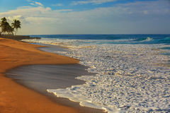 Sunset oceanview, sandy beach with white foam on it royalty free stock image