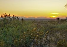 Sunset at Oliver Lee Memorial State Park. The sun setting behind the Organ Mountains to the west of Oliver Lee Memorial State Park in Alamogordo, New Mexico Stock Photo