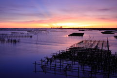 Free Sunset On Oyster Rack Stock Images - 19141804