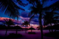 Free Sunset On The Beach Stock Image - 65028311