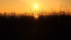 Sunset and orange sky. Over Baltic sea stock photography