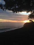 Sunset. Orange sunset in Santa Barbara over the ocean with dark trees Stock Image