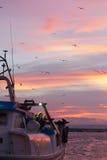 Sunset orange sky birds boat White boat Stock Photos