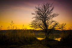 Sunset at Osterseen Lake near Iffeldorf Bavaria Germany Royalty Free Stock Photos
