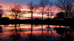 Sunset on our pond. Sun is setting on pond Royalty Free Stock Image