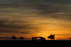 Sunset Outback Australia. Beautiful sunset in the outback Australia Stock Photography