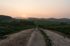 Sunset over the agricultural farm Royalty Free Stock Image