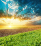 Sunset over agriculture fields Stock Images