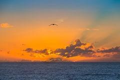 Sunset over the Atlantic Ocean in Morocco Stock Image