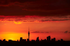 Sunset over Auckland, NZ. New Zealand has great sunsets and the one in Auckland is one of them. The cityscape is outstanding and contrasts with the orange sunset Royalty Free Stock Photo