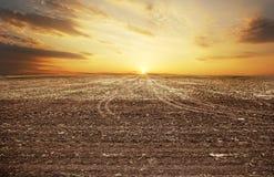 Sunset over autumn field. Stock Image