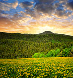 Sunset over the Bavarian Forest Stock Photography