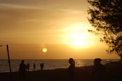 Sunset over beach. Silhouettes of people at sunset on bay beach Stock Images
