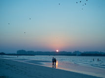 Sunset over a beach in Dubai Stock Images