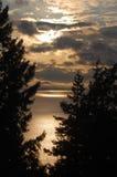 Sunset over Bellingham Bay. Sunset framed by trees over Bellingham Bay in Washington State Stock Images