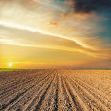 Sunset over black agriculture field Royalty Free Stock Photo
