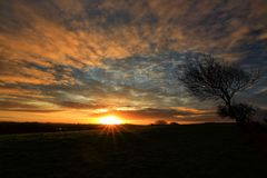 Sunset over Castlebar Town. Tree in a hilly meadow at sunset in autumn Castlebar mayo Ireland Royalty Free Stock Photos