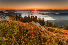 Sunset over the clouds. In the mountains Royalty Free Stock Photography