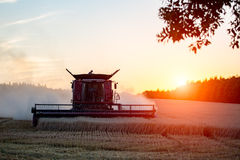 Sunset over the combine working on the wheat field Royalty Free Stock Photography