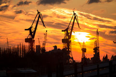 Cargo crane sunset Royalty Free Stock Photo
