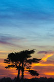 Sunset over Cypress Stock Photography