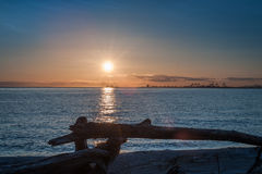 Sunset over driftwood  at twilight Stock Photos