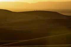Sunset over the dunes, Morocco, Sahara Desert Royalty Free Stock Photography