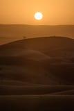 Sunset over the dunes, Morocco, Sahara Desert Royalty Free Stock Photography