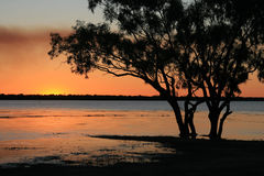 Sunset over Dunn Lake in Queensland Australia. Setting sun and colourful sky over Dunn Lake in Queensland Australia with trees in the foreground silhouetted Royalty Free Stock Image