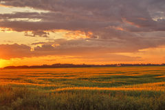 Sunset over farmland. An orange sunset with clouds over farmland with trees in the distance Royalty Free Stock Photo