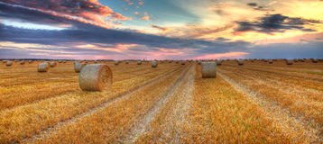 Sunset over the field. Beautiful sunset over a field with bales of hay Stock Images