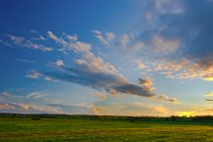 Sunset over the field Royalty Free Stock Image