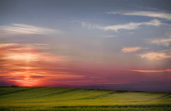 Sunset over a field Stock Photos