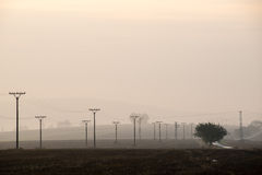 Sunset over the fields in fog Royalty Free Stock Image